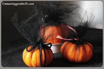 high fashion pumpkin