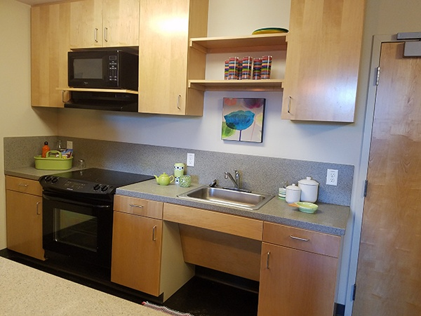 Dorm Room Kitchen