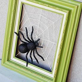DIY of the Week - Spider Frame