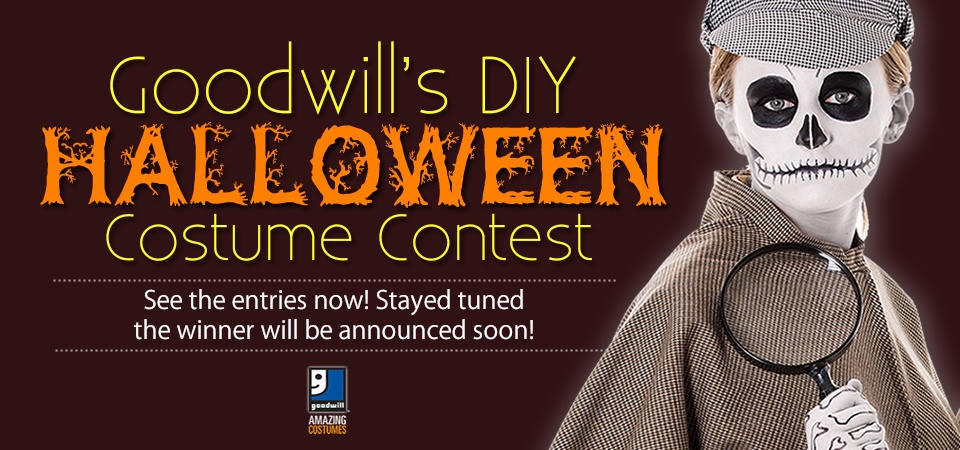 See the entries in Goodwill's DIY Costume Contest